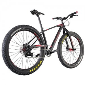 ICAN-29-Carbon-Fiber-Mountain-Bike-Summer-Fat-Bicycle-Sram-X1-Groupset-30-Inch-Tire-Wide-0